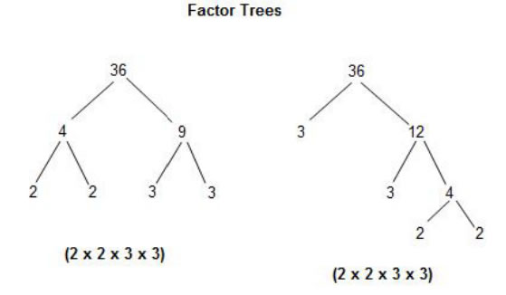 Math Grade 6 Number Relationships with examples and videos – Prime Factorization Tree Worksheet