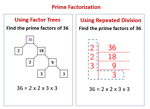 Prime Factorization Using Repeated Division  Solutions
