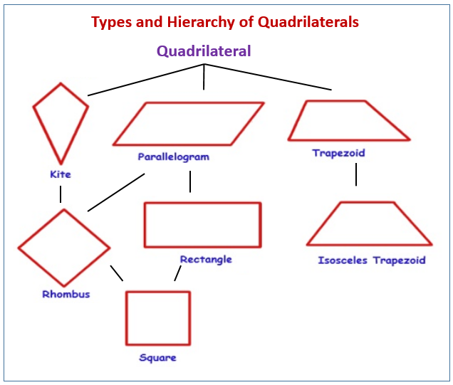 Types and Hierarchy of Quadrilaterals
