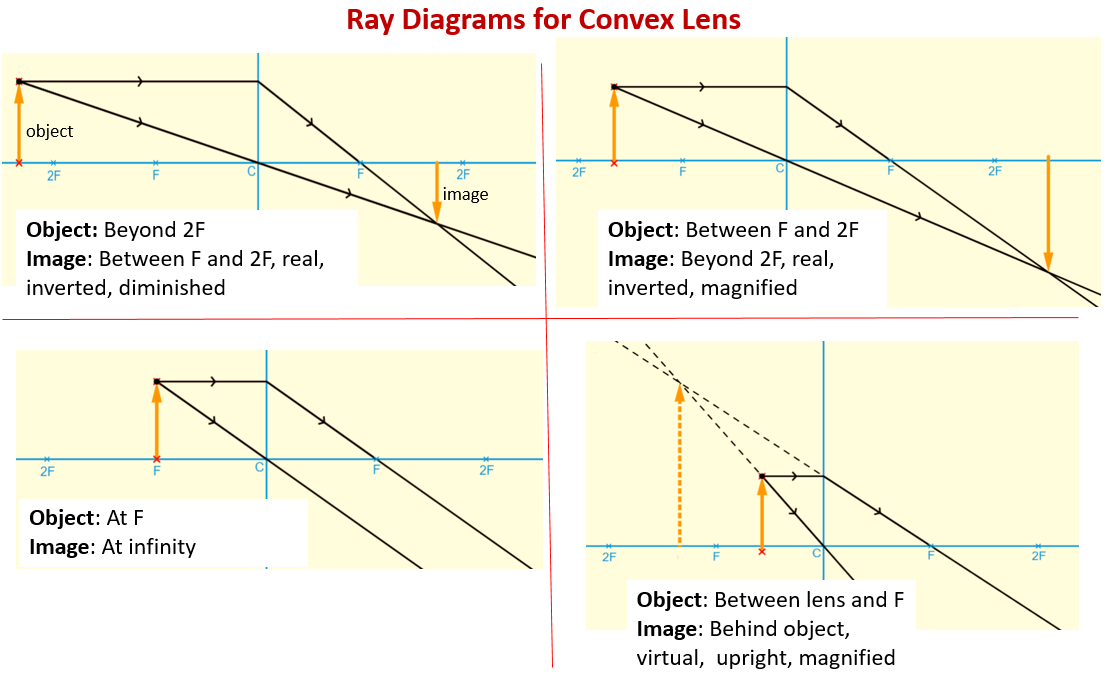 Ray Diagrams for Convex Lens