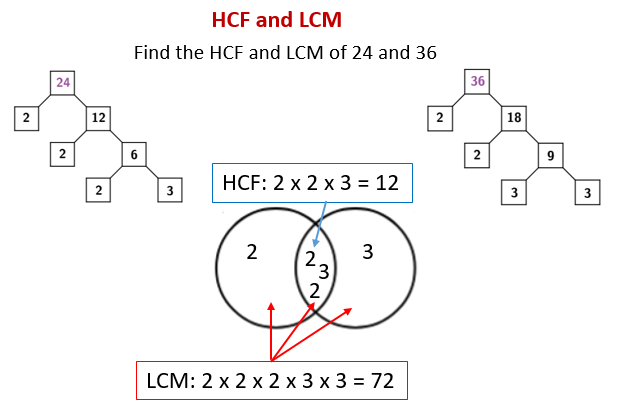 Hcf lcm solutions examples videos worksheets games activities the following diagram shows how to find the hcf and lcm of 24 and 36 using repeated division ccuart Image collections