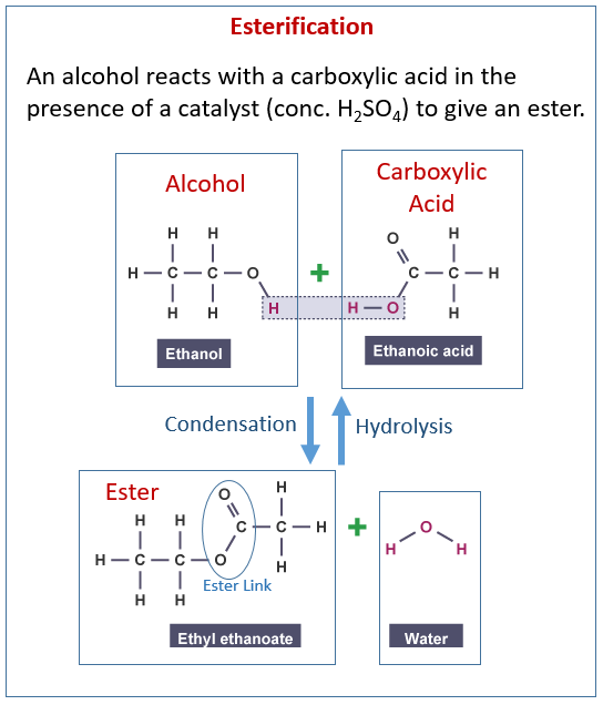 Alcohol, Carboxylic acids, Esters